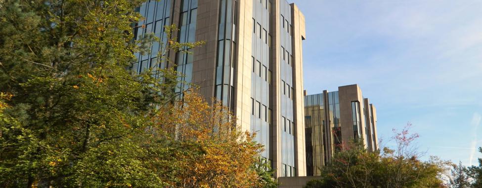LPG luxembourg : création d'entreprise